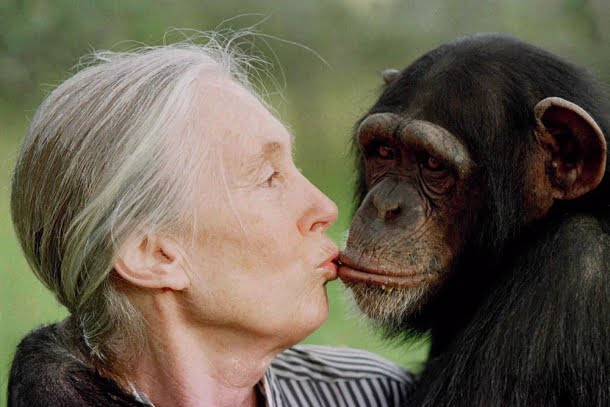 Jane: A Mãe dos Chimpanzés (2017), Brett Morgen