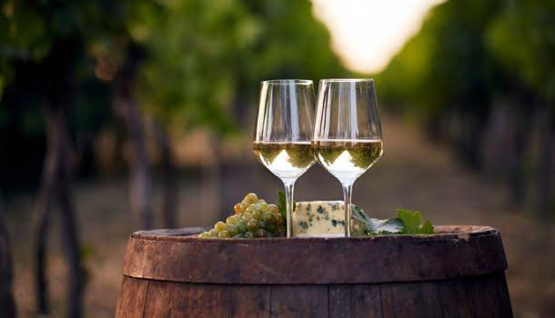 12 vinhos brancos magníficos que custam até 80 reais