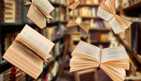 Mil livros espanarei